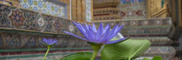2015年9月 バンコク〜チェンマイ〜チェンライ 1〜2日目バンコク